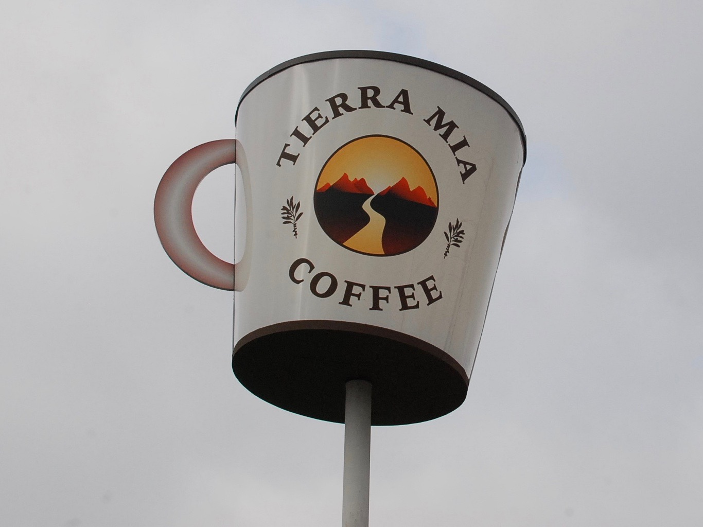 Tierra Mia Coffee: Taking Specialty Beans for a Latin Spin